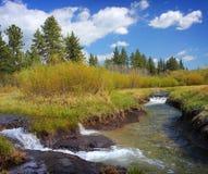 Tayolr Creek, Lake Tahoe Royalty Free Stock Photos