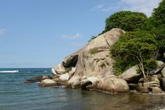 Tayrona, Colombia. The reserve Tayrone is one of three national parks of the Caribbean region of Colombia Stock Photography