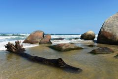 Tayrona, Colombia. The reserve Tayrone is one of three national parks of the Caribbean region of Colombia Stock Images