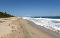 Tayrona, Colombia. The reserve Tyrone is one of three national parks of the Caribbean region of Colombia Royalty Free Stock Photography