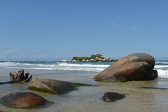 Tayrona, Colombia. The reserve Tyrone is one of three national parks of the Caribbean region of Colombia Stock Photo