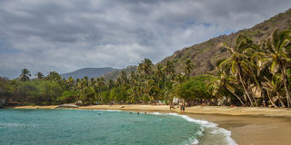 Tayrona state park, Colombia Royalty Free Stock Image