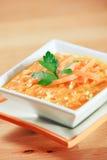 Tazón de fuente caluroso de sopa de la zanahoria del jengibre Foto de archivo libre de regalías