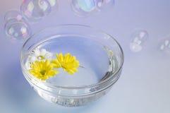 Tazón de fuente con la sal y las flores disueltas del mar. Imágenes de archivo libres de regalías