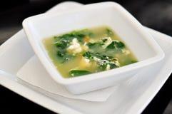 Tazón de fuente con la sopa de Straciatella Fotografía de archivo libre de regalías