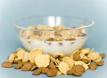 Tazón de fuente con los cereales Imagen de archivo