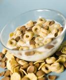 Tazón de fuente con los cereales Imagenes de archivo