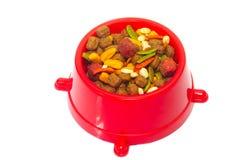 Tazón de fuente de alimento de perro Imagen de archivo libre de regalías