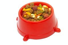Tazón de fuente de alimento de perro Foto de archivo libre de regalías