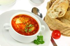 Tazón de fuente de borscht. fotos de archivo
