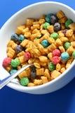 Tazón de fuente de cereal Fotografía de archivo libre de regalías