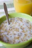 Tazón de fuente de cereal Imagen de archivo