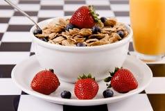 Tazón de fuente de cereal con las fresas y los arándanos Foto de archivo