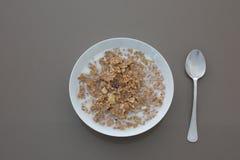 Tazón de fuente de cereal con leche Fotografía de archivo libre de regalías