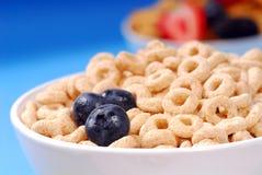 Tazón de fuente de cereal de la avena con los arándanos Imagenes de archivo
