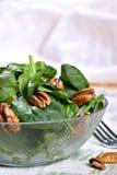 Tazón de fuente de ensalada de la espinaca con las tuercas Foto de archivo libre de regalías