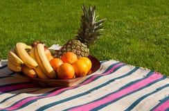 Tazón de fuente de fruta Imagen de archivo libre de regalías