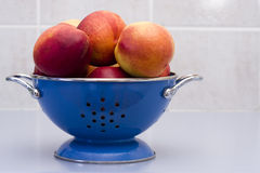 Tazón de fuente de nectarinas en un colador azul imagen de archivo