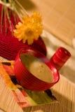 Tazón de fuente de sopa Foto de archivo libre de regalías