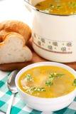 Tazón de fuente de sopa de pollo Fotografía de archivo