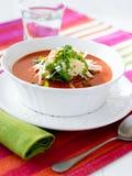 Tazón de fuente de sopa del tomate Fotos de archivo