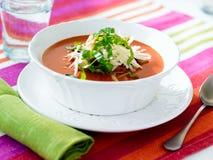 Tazón de fuente de sopa del tomate Imagenes de archivo