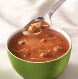 Tazón de fuente de sopa del tomate Imágenes de archivo libres de regalías