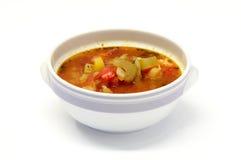 Tazón de fuente de sopa vegetal Foto de archivo libre de regalías