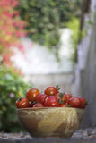 Tazón de fuente de tomates imagen de archivo libre de regalías