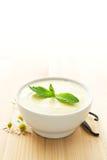 Tazón de fuente de yogur de la vainilla Fotografía de archivo