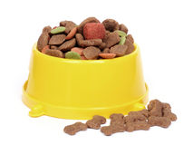 Tazón de fuente del alimento para animales domésticos fotos de archivo