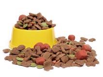 Tazón de fuente del alimento para animales domésticos Fotografía de archivo