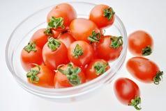 Tazón de fuente del tomate Imagen de archivo libre de regalías