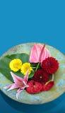 Tazón de fuente flotante de flores imagenes de archivo