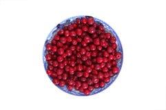 Tazón de fuente grande de cerezas Foto de archivo libre de regalías