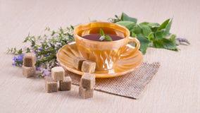 Taza anaranjada de té con las flores de los pedazos de la caña de azúcar, azules y rosadas Imagenes de archivo