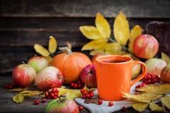 Taza anaranjada en fondo del otoño Imagen de archivo libre de regalías
