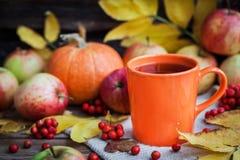 Taza anaranjada en fondo del otoño Fotografía de archivo