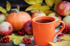 Taza anaranjada en fondo del otoño Imagen de archivo
