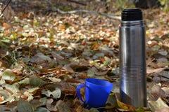 Taza azul y un termo en el follaje del otoño fotos de archivo libres de regalías