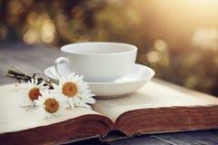 Taza blanca, camomiles y el libro viejo abierto Imágenes de archivo libres de regalías