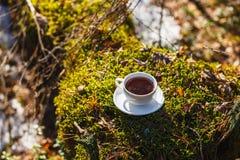 Taza blanca con té en un platillo en el bosque soleado fotos de archivo