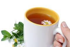 Taza blanca con té herbario Fotos de archivo