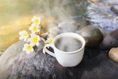 Taza blanca de café sólo caliente en roca de la cascada con la flor y Imagen de archivo