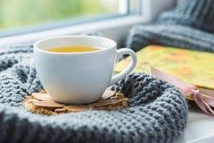 Taza blanca de té de manzanilla con la bufanda gris en el alféizar Fotos de archivo libres de regalías