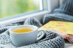 Taza blanca de té de manzanilla con la bufanda gris en el alféizar Foto de archivo libre de regalías