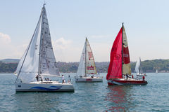 Taza Bosphorus 2011 de la navegación de la colección de W Imagenes de archivo