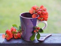 Taza brillante con las flores frescas en el alféizar fotos de archivo libres de regalías