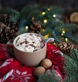 Taza caliente de la Navidad de chocolate con el bastón de caramelo, la crema, las nueces y el jersey hecho punto Fotos de archivo