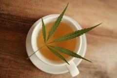 Taza caliente del blanco del té de la hierba del cáñamo del cáñamo Fotografía de archivo